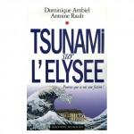 medium_tsunami_sur_l_elisee.4.jpg