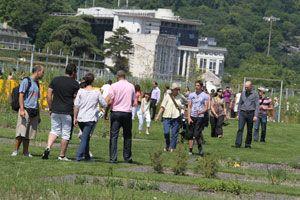 jardins_ile_seguin_new.jpg